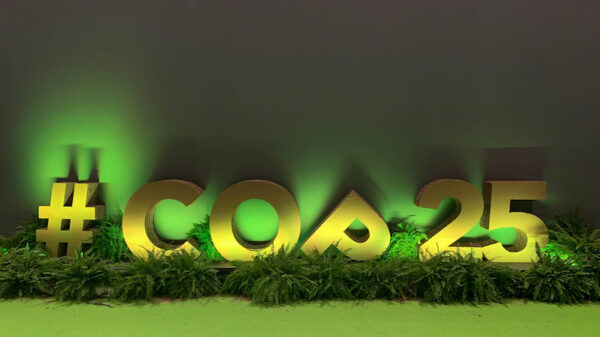 Cop25 Bulletin: The future of climate talks