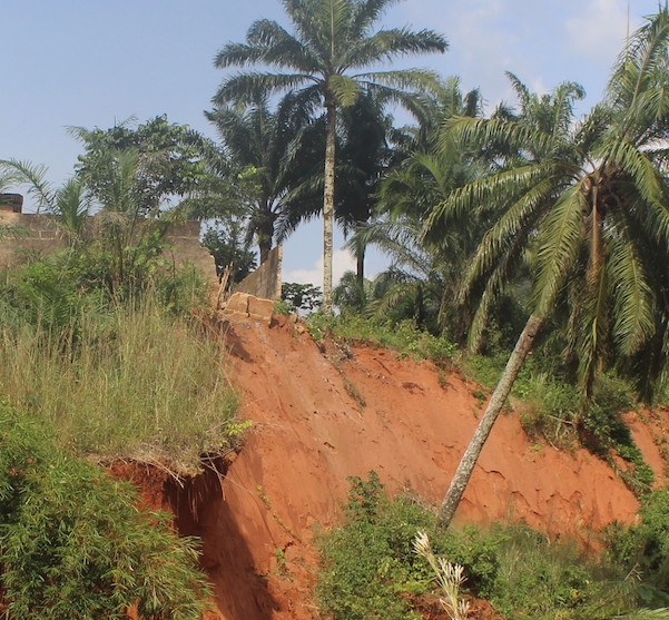 The ravine in Umuchiana is advancing towards homes and felling trees