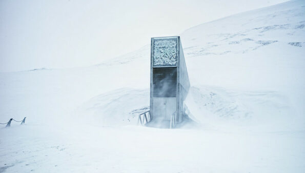 'Noah's Ark' Arctic seed vault gets new crops, recovers to 1 million samples