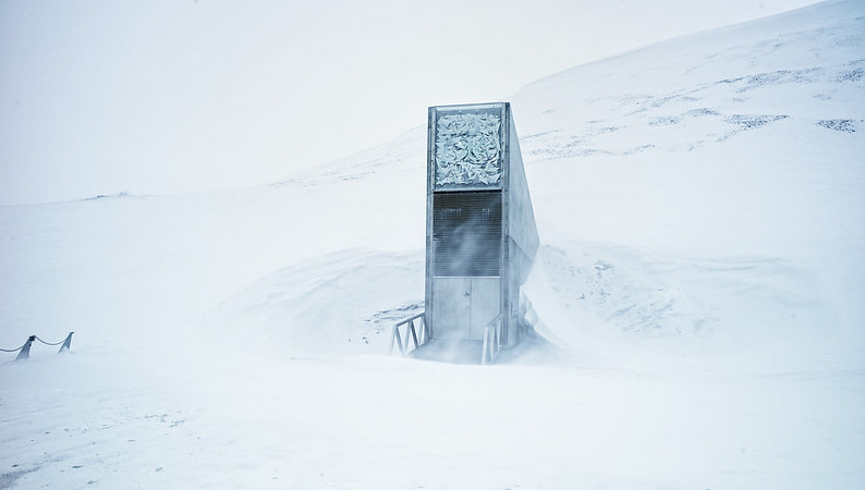 Noah S Ark Arctic Seed Vault Gets New Crops Recovers To One