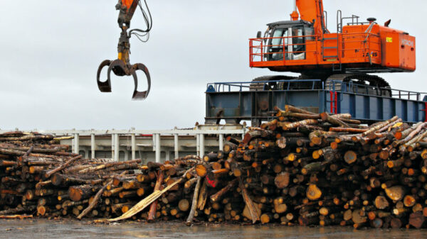 Not all biomass is carbon neutral, industry admits as EU reviews policy