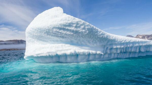 'Worst-case' global warming scenario still best guide until 2050, study says