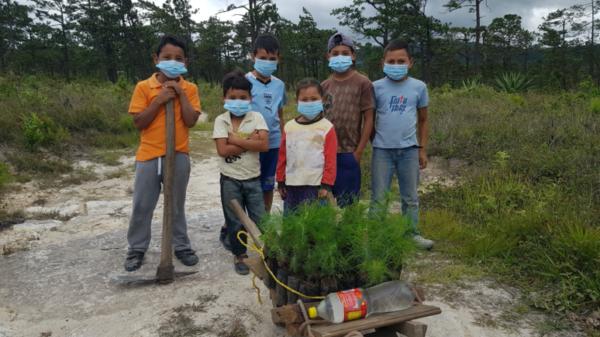Climate change adaptation projects continue amid coronavirus pandemic