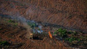 UN summit highlights $700bn funding gap to restore nature
