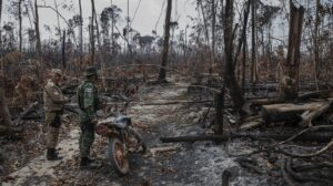 Brazil's military operations are not halting deforestation in the Amazon