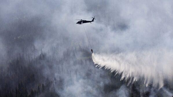 WMO: Siberian heatwave put 2020 among three hottest years on record
