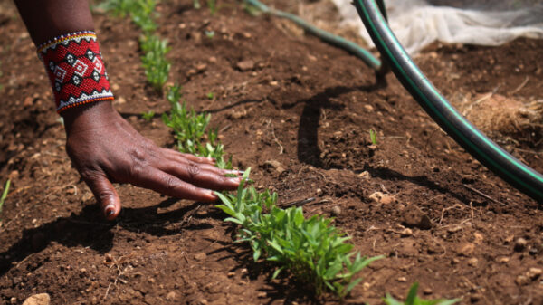 In Kenya's changing climate, women are claiming land rights to feed their families