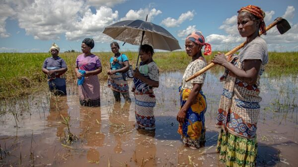 Covid-19 normalised social protection. Now apply it to the climate crisis