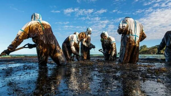 Mauritius oil spill: questions mount over ship fuel safety