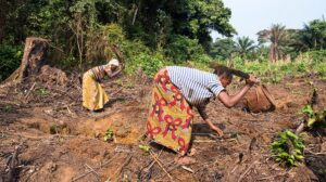 Joe Biden's climate ambitions must include land rights for Congo forest communities