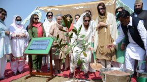 Pakistan explores debt-for-nature scheme to accelerate its 10 billion tree tsunami