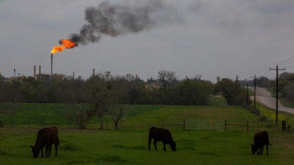 Saudi, US net zero oil producer initiative meets sceptical response
