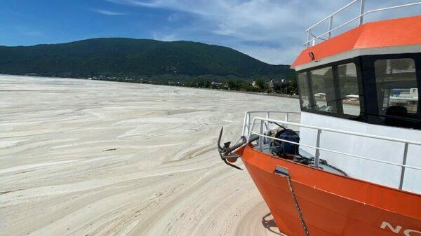An outbreak of 'sea snot' is killing Turkey's fishing industry