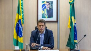 Months after criminal probes launched, Brazilian environment minister quits