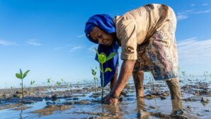 Row erupts at Green Climate Fund over who defines climate adaptation
