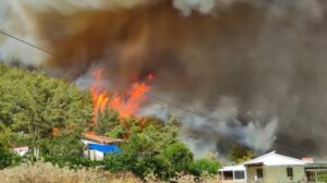 A week of wildfires has left thousands homeless in southern Turkey