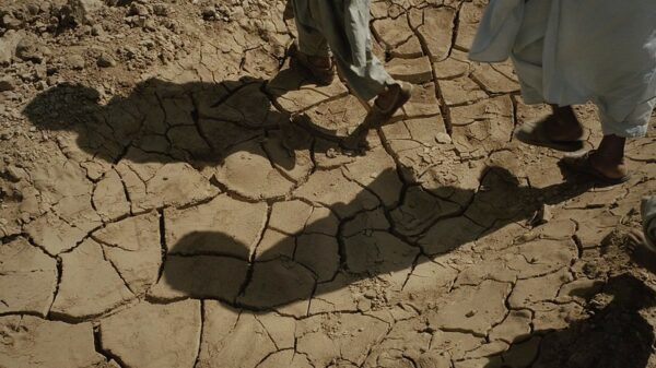 Displaced Afghan negotiator calls for climate aid to war-torn states