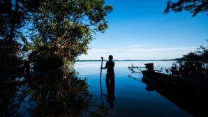 Conservationists set out 'nature positive' vision for global biodiversity deal